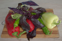 Backgro del peperone dolce, basilico e pomodoro verdi e rossi Includa le verdure ed il pepe organici sul pavimento di legno Fotografia Stock