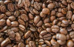 Backgrond del grano de café Imagen de archivo