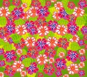 Backgrond floral do verão brilhante Fotografia de Stock Royalty Free