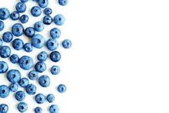 Backgrond recentemente escolhido dos mirtilos Fundo da uva-do-monte Mirtilos na opinião superior do fundo branco, teste padrão li fotografia de stock royalty free