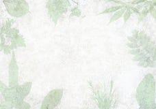Backgrondmuur met bladeren wordt bevlekt dat Royalty-vrije Stock Foto's