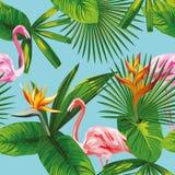 Backgrou azul sem emenda tropical das folhas e das flores do flamingo cor-de-rosa Imagens de Stock Royalty Free