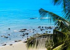Backgrou vívido horizontal da composição da palma do oceano da praia da rocha da areia Imagem de Stock Royalty Free