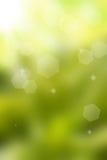 backgroud bokeh φυσικό φως του ήλιου στοκ φωτογραφίες
