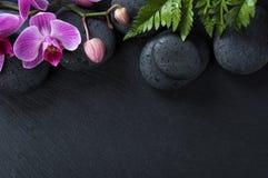 Backgroud dos termas com orquídeas Imagem de Stock