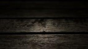 Backgroud en bois de texture banque de vidéos