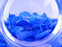 Backgroud with roses petals Stock Photo