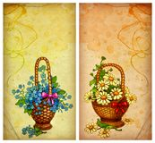 Backgrouds with basket of flowers Stock Photos