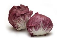 backgroun κόκκινο λευκό λάχανων Στοκ Εικόνες