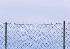 Backgroun de aço dos azul-céu da malha fotografia de stock