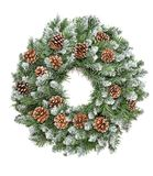Backgroun sempre-verde do branco dos cones da grinalda do pinho da decoração do Natal foto de stock