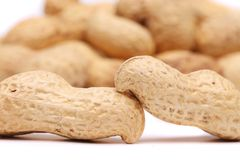 Backgroun of the two peanuts Stock Photography