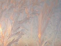 Background 10. Frost drawing stock photos