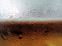 Background. Beer in glass at macro Royalty Free Stock Images