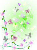 Background. Spring background with butterfly and colour vector illustration