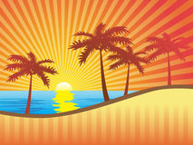 Background. Four palms at dawn. Vector illustration Stock Photography