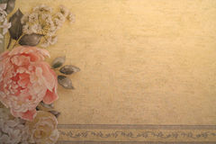 Background. A floral textured background Royalty Free Stock Photos