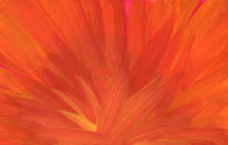 Background. Hand painted orange watercolor background Stock Images