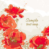 Background with 5 flower of poppy. Five beautiful red poppy on textured background Stock Photo