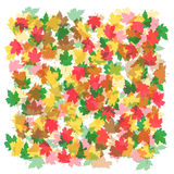Background abstract  autumn leaves abstract background. Background autumn leaves abstract background Royalty Free Stock Photography