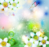 Background with abstract flower Royalty Free Stock Images