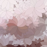 Background of the abstract flowers and petal. S Royalty Free Stock Photography