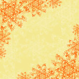 Background with Abstract Orange Flowers Royalty Free Stock Photo