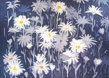 Background abstract painting with chamomile flowers. Background abstract painting with chamomile flowers in white and blue Stock Images