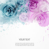 BAckground with abstract roses template Stock Photos