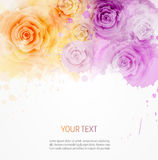 Background with abstract roses template Stock Images