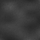Background abstract skin texture grey Royalty Free Stock Photos