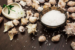 Background abstract spa, sea salt, flower Royalty Free Stock Image