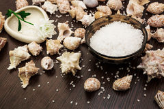 Background abstract spa, sea salt, flower Stock Image