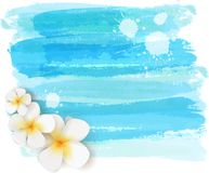 Brushed backgrounds with flowers. Blue colored. Background with abstract watercolor brushed lines and tropical plumeria flowers. Summer travel concept Royalty Free Stock Photo