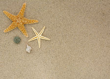 Background with ad space for beach and summer vacation Stock Photo