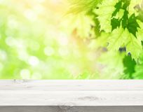 Background for advertising Royalty Free Stock Photography