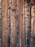 Background of aged knotted grainy pine Stock Images