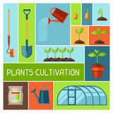 Background with agriculture objects. Instruments for cultivation, plants seedling process, stage plant growth Stock Images