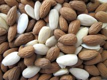 Background almond shells. Background natural group almond shells Stock Photos