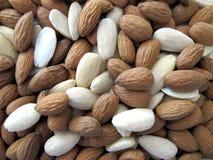 Background almond shells Stock Photos
