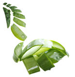 Background with aloe vera Royalty Free Stock Images