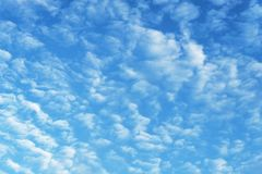 Alto-cumulus clouds in the blue sky Royalty Free Stock Photography