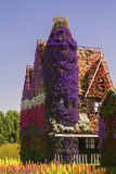 Background amazing house with  windows of colorful flowers petunias in Dubai Miracle Garden. Background amazing house with a tower and windows of colorful Stock Images