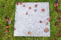Background of ancient marble tile lawn autumn leaf Royalty Free Stock Images