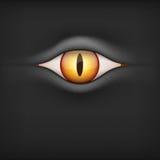Background with animal eye. Vector Illustration. Black Background with brown animal eye. Vector Illustration on white background Stock Images
