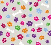 background animal footprints  illustration Stock Photos