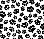 Background animal footprints seamless pattern Royalty Free Stock Photography