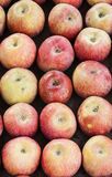 Apples. Background of Apples at street market Royalty Free Stock Photo