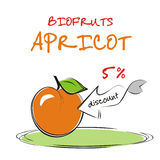Background with apricot.. Vaucher discount for organic apricot. Vector illustration Vector Illustration