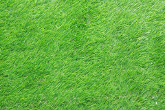 Background Artificial Grass Stock Images
